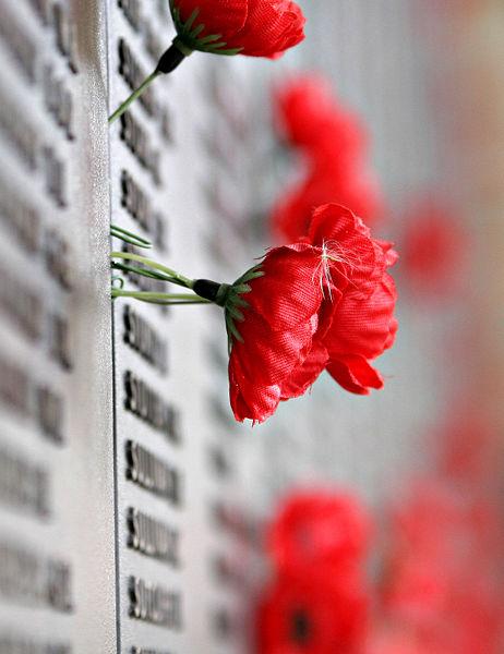 462px-Remebrance_poppy_ww2_section_of_Aust_war_memorial