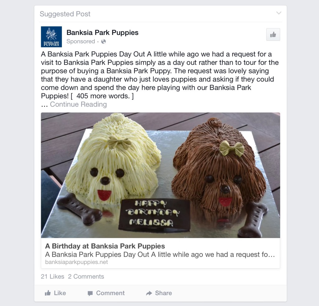 Pathetic, more manufactured and half baked puppies from Banksia Park Puppies